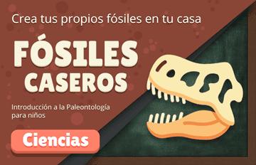 🦖 Fósiles Caseros